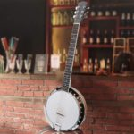 Jacks­king Banjo