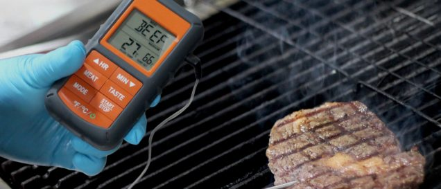 bluetooth grillthermometer test