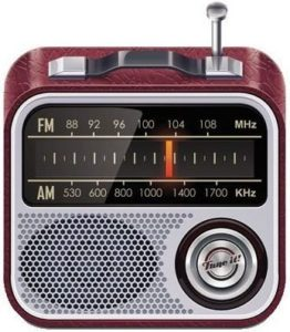 bluetooth-radio-ukw1