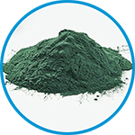 Chlorella in Pulver-Form