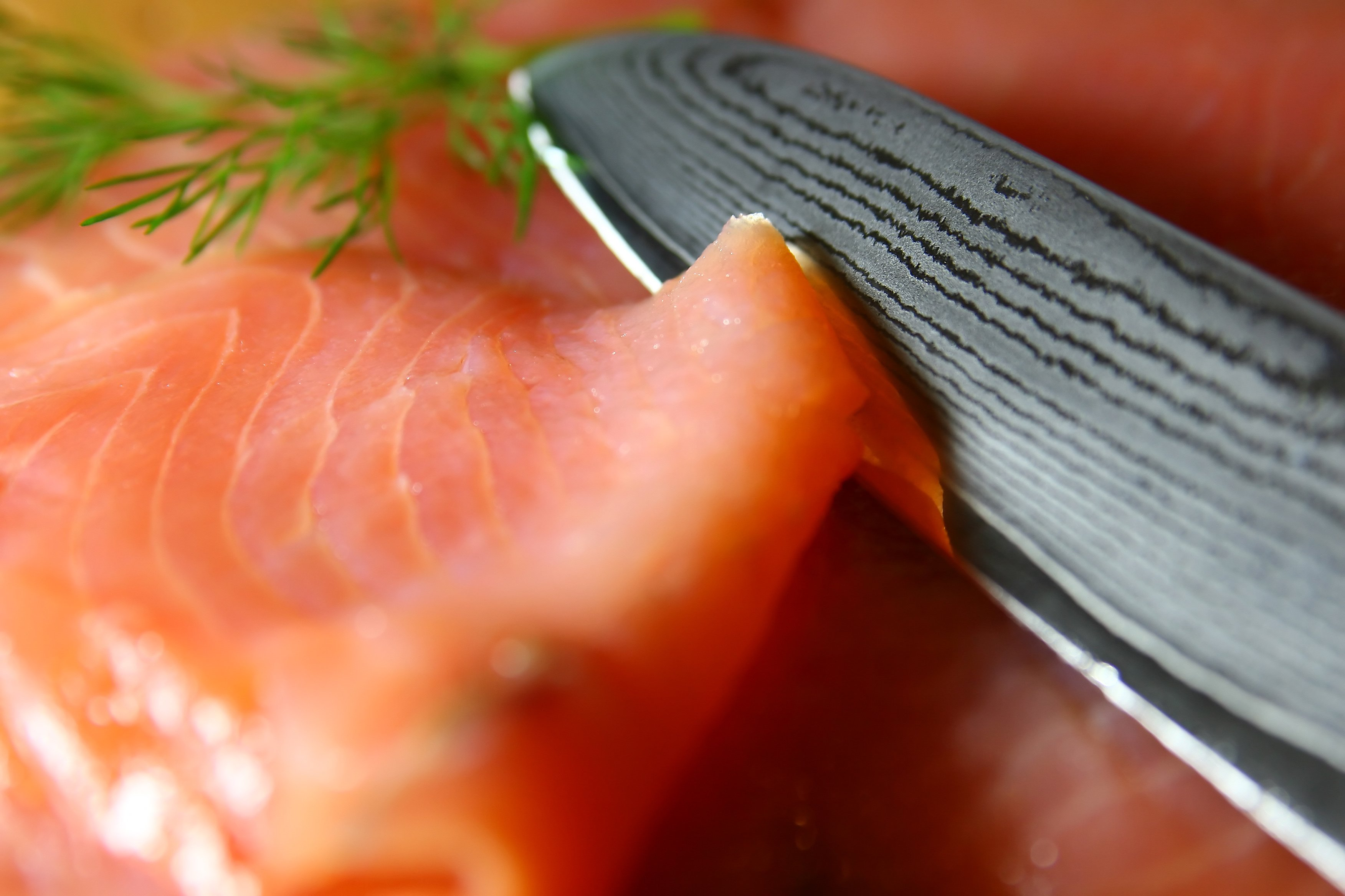 damastmesser test lachs