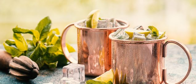moscow-mule-becher-typen